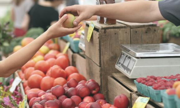 Comprar frutas de estación